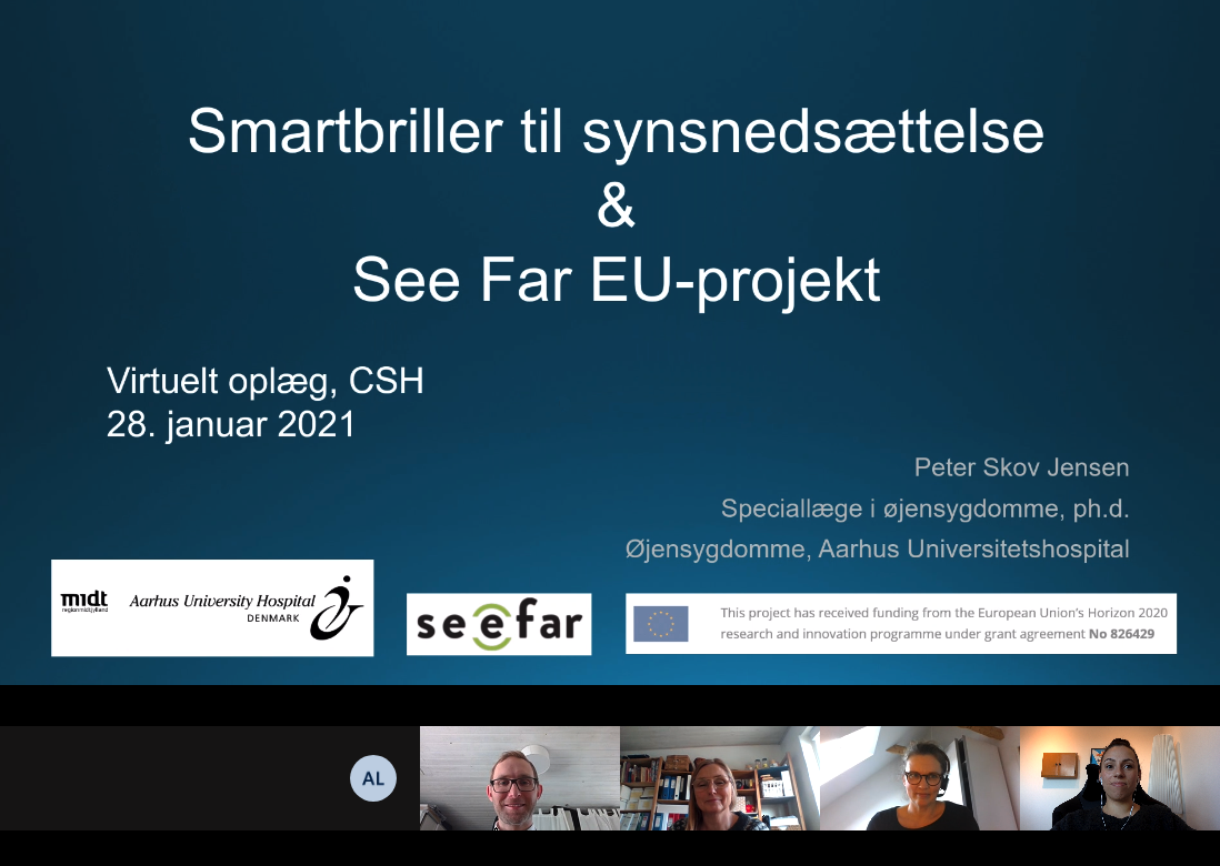 SeeFar-at-CSH_28.01.21_lecture-about-smart-glasses1